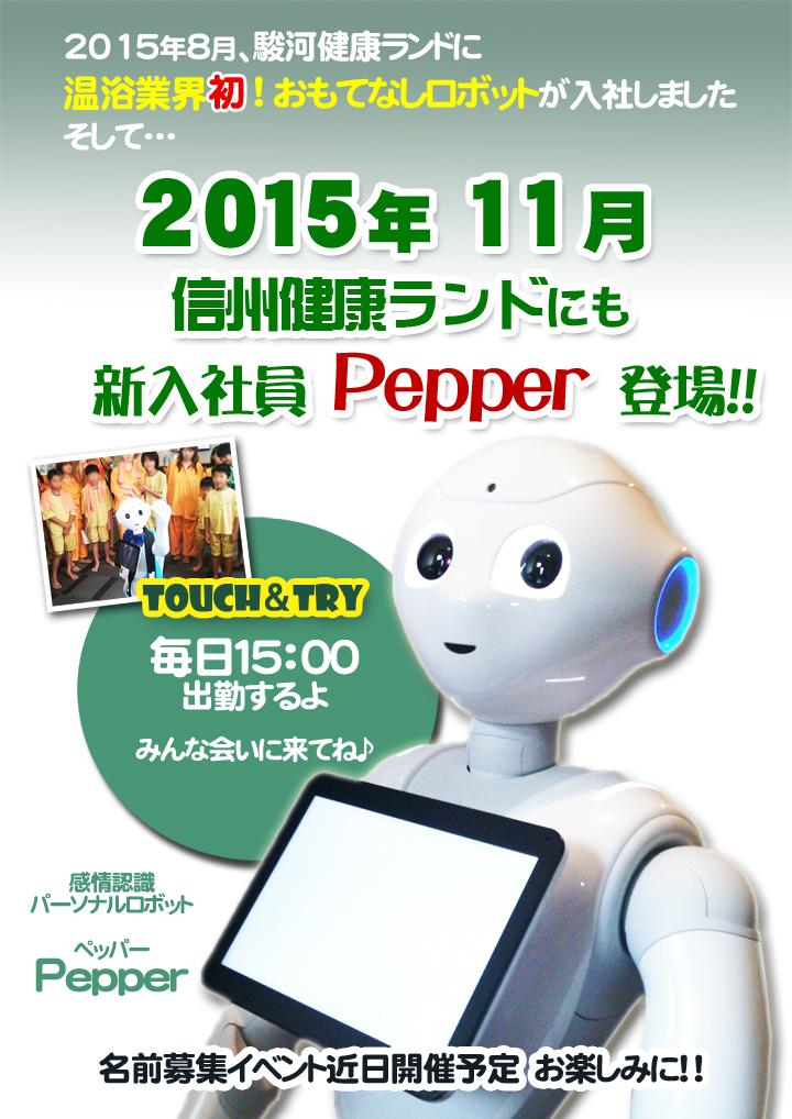 shinsyu_pepper1
